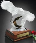 Eagle Spirit Achievement Award Trophies