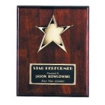 Star Plaque Achievement Award Trophies