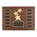 Perpetual Star Plaque Achievement Award Trophies