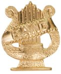 Gold Band Metal Chenille Letter Insignia Chenille Lapel Pins