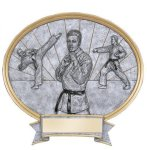 Legend Karate Oval Award Circle Awards