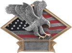 Diamond Plate Resin -Eagle Eagle Trophy Awards