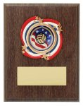 Volleyball USA Plaque Mount Award Economy Awards