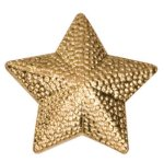 Gold Star Metal Chenille Letter Insignia Patriotic Awards