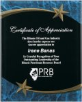 Blue Marble Shooting Star Acrylic Award Recognition Plaque Patriotic Awards